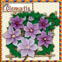 Clematis wall hanging - crochet pattern