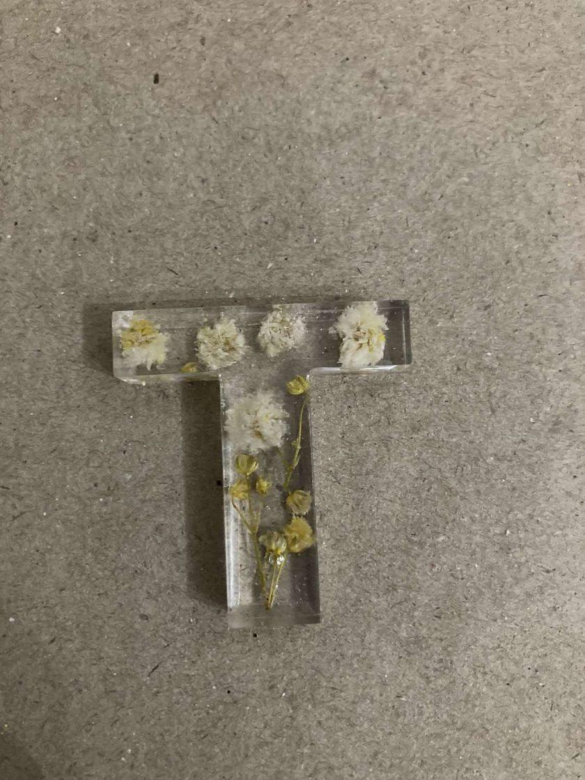 Resin letter T key chain or plain 3