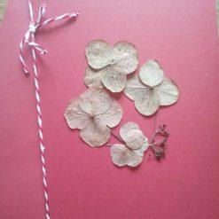 Shell love heart card - handmade with tellin shells