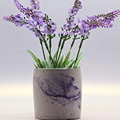 Plant Pot / Pen Holder, Round Shape Concrete