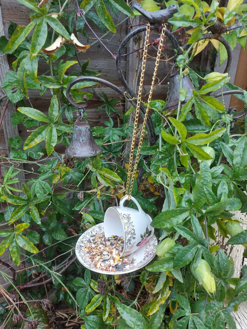 """Vintage teacup bird feeder """"Dotty"""""""