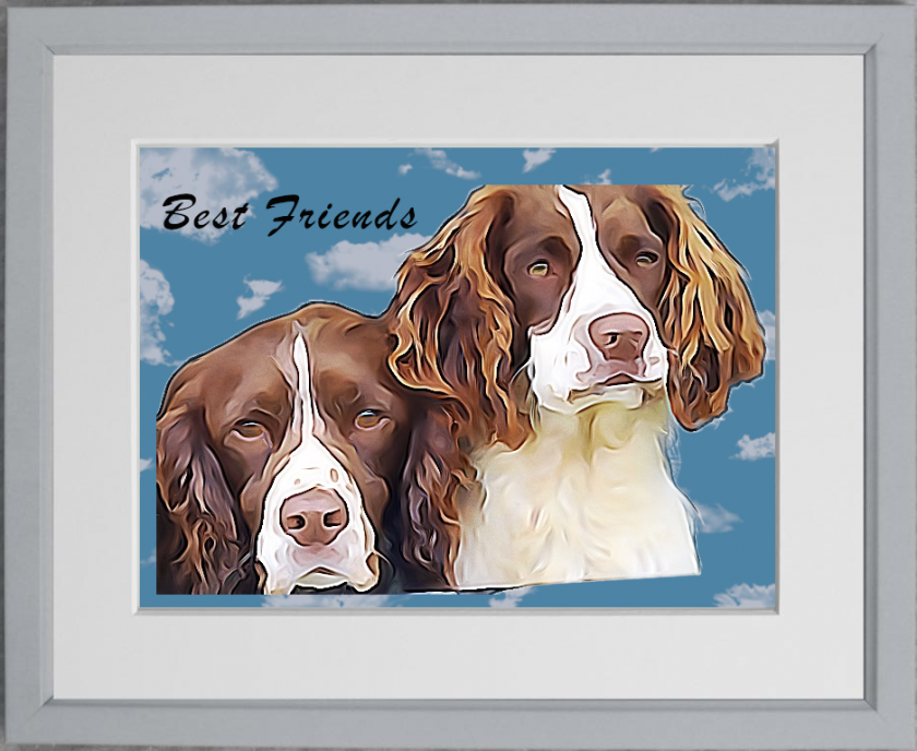 Bespoke personal pet portrait from photo. Custom pet print, in time for Christmas. Dog / cat / budgie portrait 1