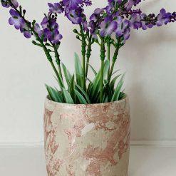Rose Gold Plant Pot, Round Shape Concrete