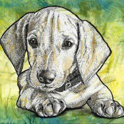- Dachshund puppy, sausage dog, original watercolour and ink artwork