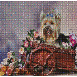 Blue Owl Counted Cross Stitch Kit 26x21cm 14ct -Yorkshire Terrier (#101001)