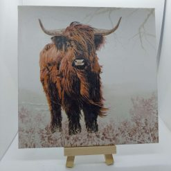 Beautiful Black and White Cow Tile