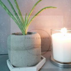 Concrete Plant Pot and Tray