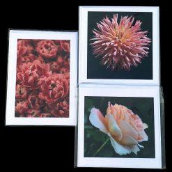 Handmade greetings cards, Shades of pink