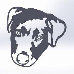 Colliedor - (Puppy)