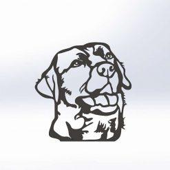 Labrador - (Adult)