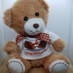Valentines Day Teddy Bear Gift 20cm