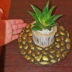 Cement decorative pot with succulent plants