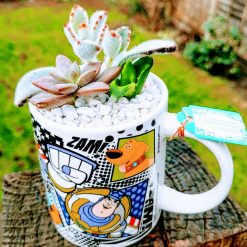 Cute Pixar design kiddies mug with 3 succulents, with drainage