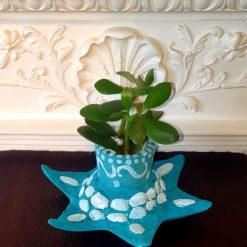 Decorative pot with real succulent plant