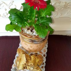 Decorative pot with real flower