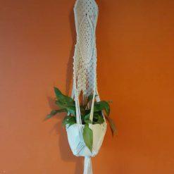 Unique macrame plant hanger