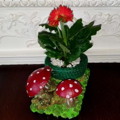 Cement decorative pot with real flower