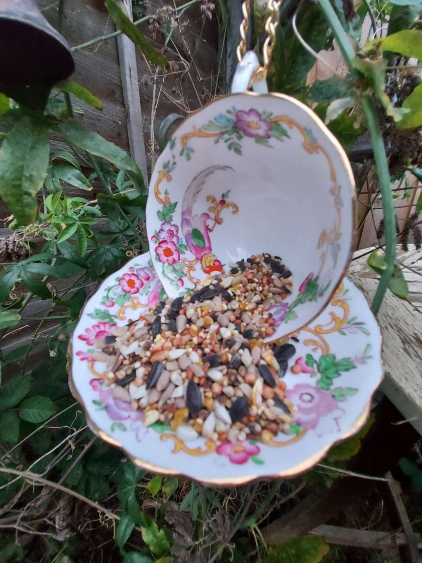 "Vintage teacup bird feeder ""Harriet"""