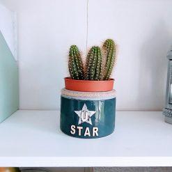 Plant Pot gift