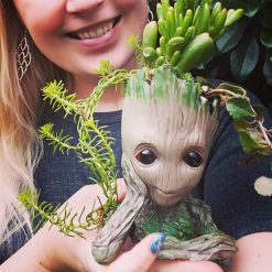 Beyond cute baby Groot planter with succulents or aloes