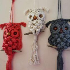 Macramé Owl wall hanging cotton cord, beaded eyes, drift wood and in different colours, free post to UK.