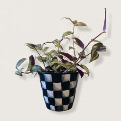 Handmade Clay Black and White Checked Plant Pot