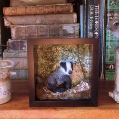 Needle Felt Badger  , Diorama, Miniature Scene, Watercolour painting, Landscape, Needle Felted Animal, Wool Sculpture, Fibre Art, Sculpture, Gift, Woodland Creature, Wildlife (Copy)