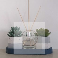 Concrete Suculant Plant Pot and Reed Defuser Set *free delivery*