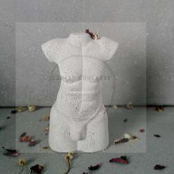 Concrete Male Torso *free delivery*