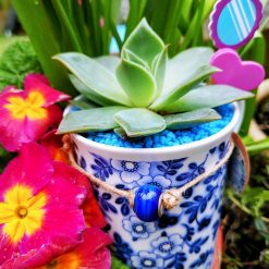 Beautiful blue flowers themed mug with a lovely succulent and matching dressing. Hole for drainage.