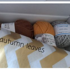 Knit a Gift Knitting Kit - Colour Autumn leaves