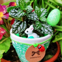 Beautiful green Hand painted pot with striking house plant (Pilea) and matching stones and Easter embellishments