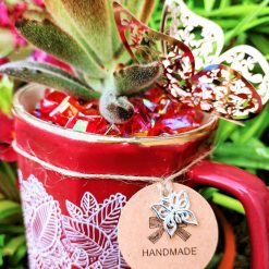 Beautiful hand painted red mug with succulent (Panda plant), matching stones and embellishments. With drainage hole.