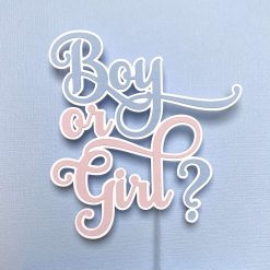 Baby Shower/Gender Reveal Cake Topper