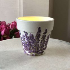 Medium lavender plant pot