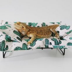 lizard lounger