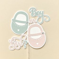 Baby Shoes Gender Reveal Cake Topper