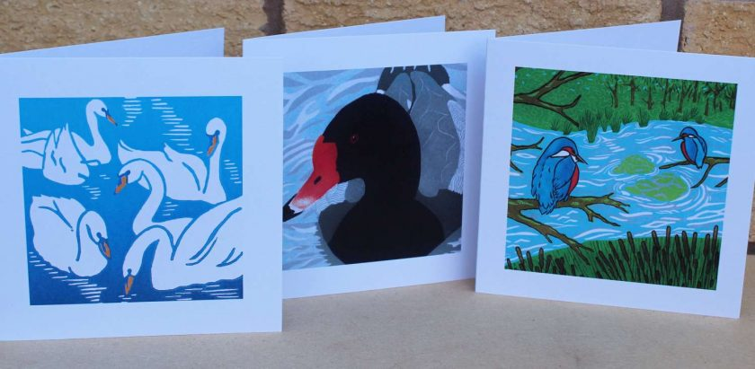 Feathers & Water Greetings Cards - Set of 3 (Mother's Day, Birthdays, all occasions) by Sarah's Printing