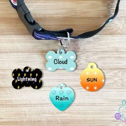 Weather personalised dog tag
