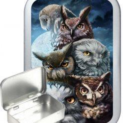 Owl School Hinged Tin, Pocket Tin, Pill Tin, Sewing Tin, Storage Tin, 50ml Tin