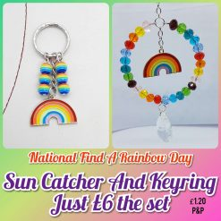Rainbow sun catcher amd keyring set