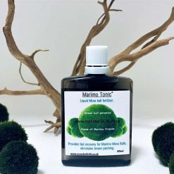 Marimo Tonic - 60ml
