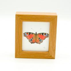 Butterfly Miniature Box Framed Art