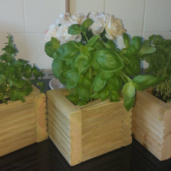 Wooden Decking herb planter box pack of 3