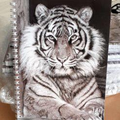 Aguia, tigress A5 spiralbound notebook