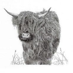 'Rockstar...' Highland Cow Limited Edition Print Mounted Giclée A4 Print Fine Art