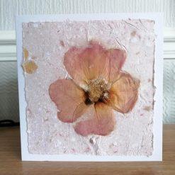 Handmade cards    Original   Blank   14cm x 14cm   Handmade paper   Botanical   Square card