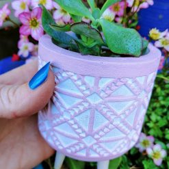 Gorgeous succulent in pebbles & cactus soil in plastic pot, placed in beautiful pink tribal style pot on wooden legs (tripod).