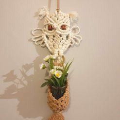 Macrame owl mini plant hanger