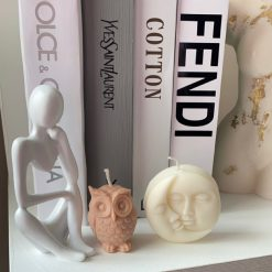 Owl & moon duo